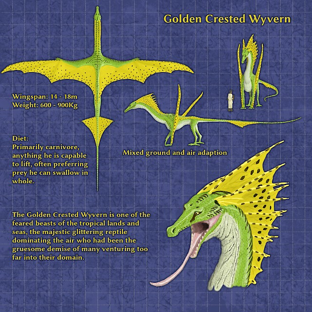 Golden Crested Wyvern